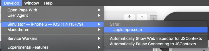 Safari's Develop Menu